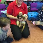 Linda Moore from Party Pets is with us every Wednesday from 11.30am!