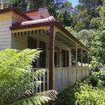Savannah's Cottage view