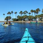 Foto de Adventures in Florida - Day Tours