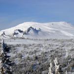 Mountainous Verblyudy