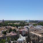 Vistas de Sevilla desde la Giralda
