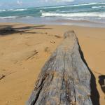 Photo of Playa Moron