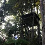 The Tree House at Ela Ecoland Munnar