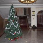 Ramada Hotel Trimontium Princess Foto