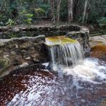 Photo de Amazon Ecopark Jungle Lodge