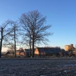 Winter in Wijer