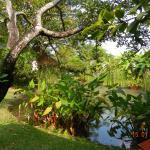 Secret Garden Chiang Mai Φωτογραφία