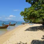 Photo de Sun Island Tours