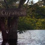 Foto de Cuyabeno Lodge