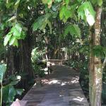 Matanivusi Surf Resort Foto