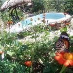 Kep Butterfly Farm Photo