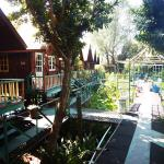 Sam's Jungle Resort Guest House Foto