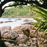 Ribeiro Beach Foto