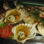 Mixed fresh fish plate to share