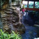 Catamaran Resort Hotel and Spa ภาพถ่าย