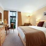 Hilton Double Guestroom