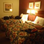 Econo Lodge Philadelphia Airport Photo