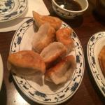 greasy fried pork dumplings