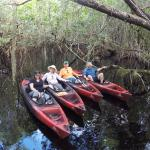 Tour the Glades - Private Wildlife Tours Foto
