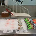 Quality Poultry and Seafood Foto