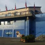 Aquarium of the Bay Foto