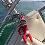 Our SKEERY ELF enjoying the Witchie Poo