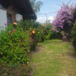 Foto de Hosteria Airport Garden