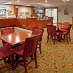 Holiday Inn Express Hotel & Suites Mount Arlington-Rockaway Area Foto