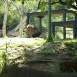 Perth Zoo