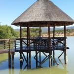 Photo de Buffelsdrift Game Lodge Restaurant