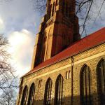 St. Peter's Cathedral (Dom) ภาพถ่าย