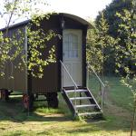 Shepherd's Hut accommodation