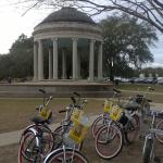 FreeWheelin' Bike Tours Photo