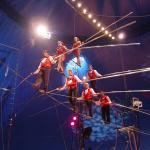 Photo de Circus Sarasota