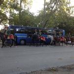 Vidam Park Foto