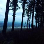 Bald Peak State Park Foto