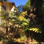 Kilauea Lodge Resmi