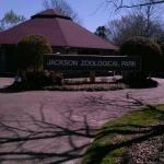 Jackson Zoo Foto