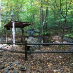 Catoctin Mountain Park Photo
