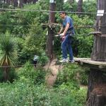 Adrenalin Forest Photo