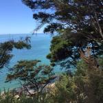 Foto de Wilsons Abel Tasman - Day Tours