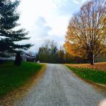 Foto de The INN at Willow Pond