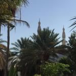 Jumeirah Mosque Photo
