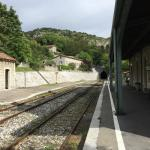 Photo de Train à Vapeur des Cévennes