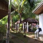 Paragayo Resort Resmi