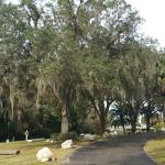 Plantation Inn and Golf Resort Foto