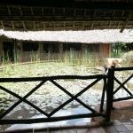 Photo de Voi Wildlife Lodge