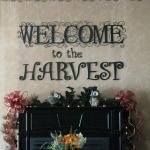New Harvest Restaurant
