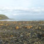 rocky shore on left