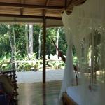 Foto de Bosque del Cabo Rainforest Lodge